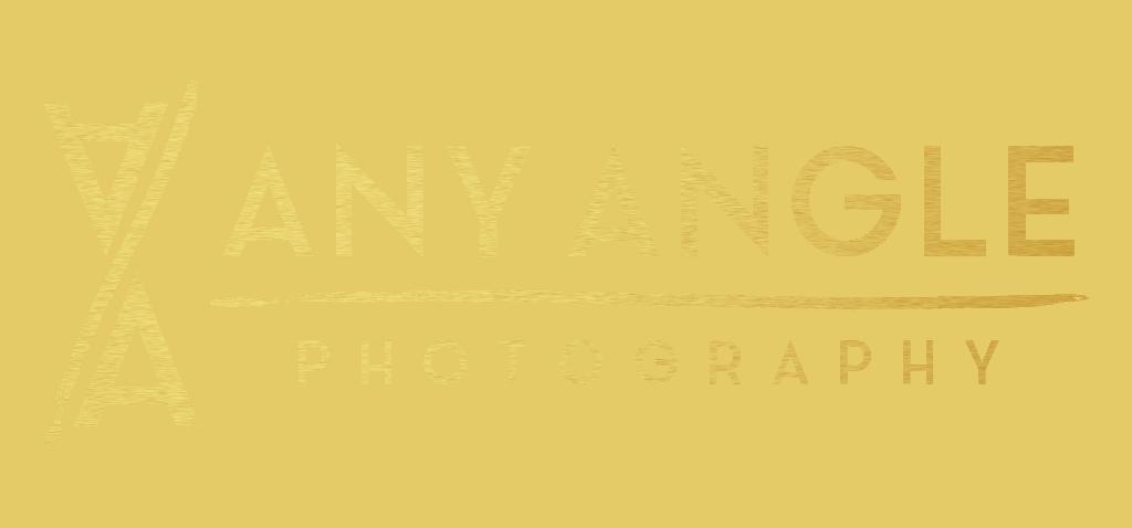 Any Angle Photography Logo - Gold
